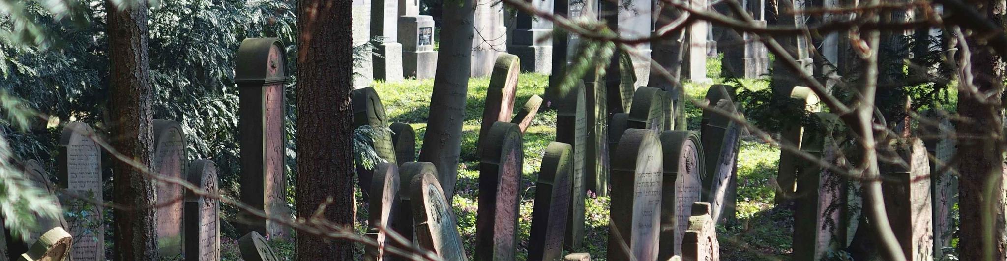 Jüdischer Friedhof Hanau
